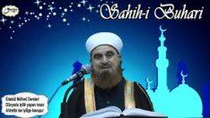 Sahih i Buhari Edebü'l Müfred Dersleri Dünyada iyilik yapan insan Ahirette ise İyilige kavuşur